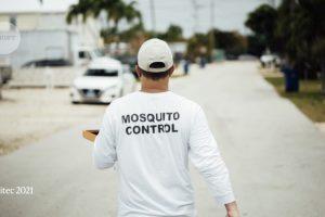 Primeros mosquitos modificados genéticamente lanzados en los Estados Unidos