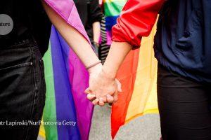 Los patrones genéticos ofrecen pistas sobre la evolución de la homosexualidad