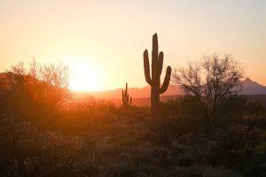 7 razones para visitar Phoenix: una guía de la ciudad más caliente de Estados Unidos