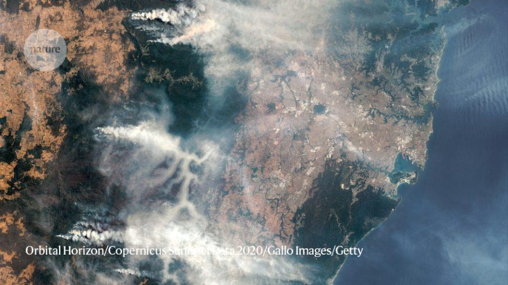 Los incendios forestales australianos expulsaron enormes cantidades de carbono